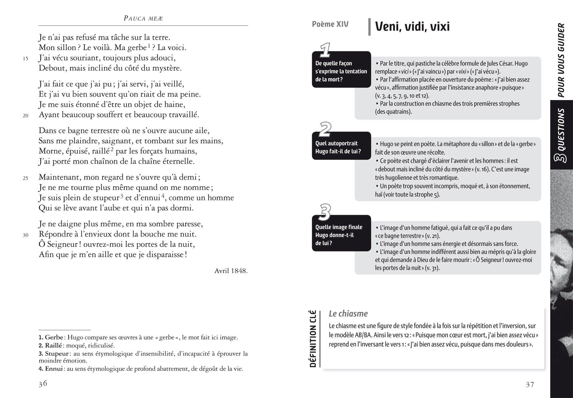 poeme 4 pauca meae analyse