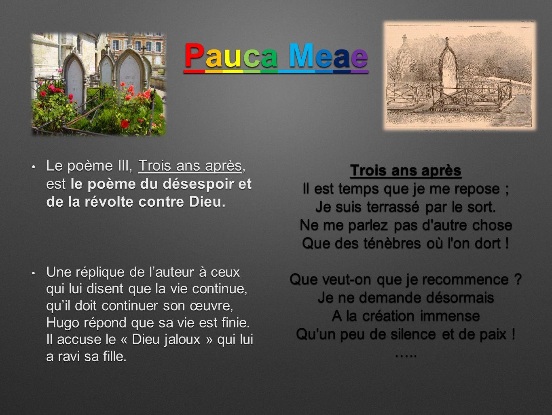 poeme 8 pauca meae