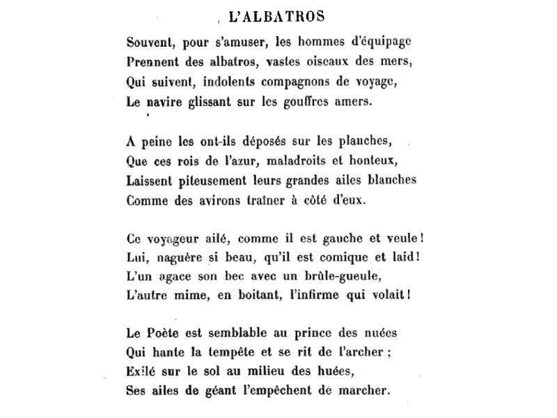 poeme albatros