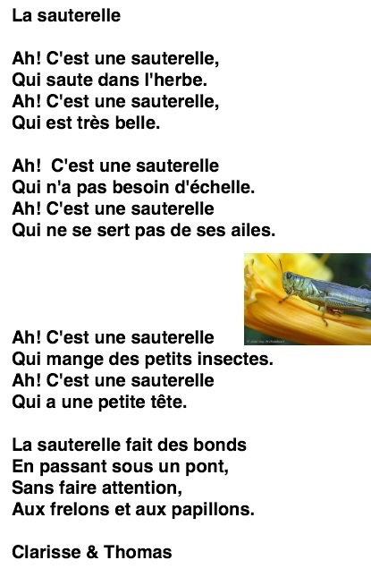 poeme insecte