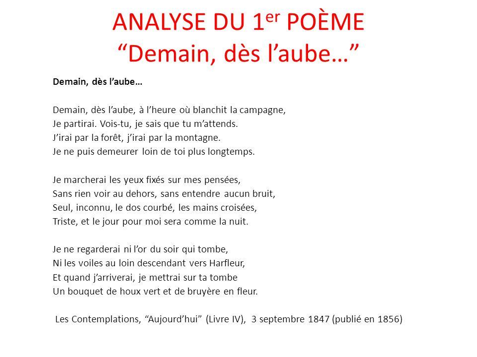 poeme v pauca meae analyse