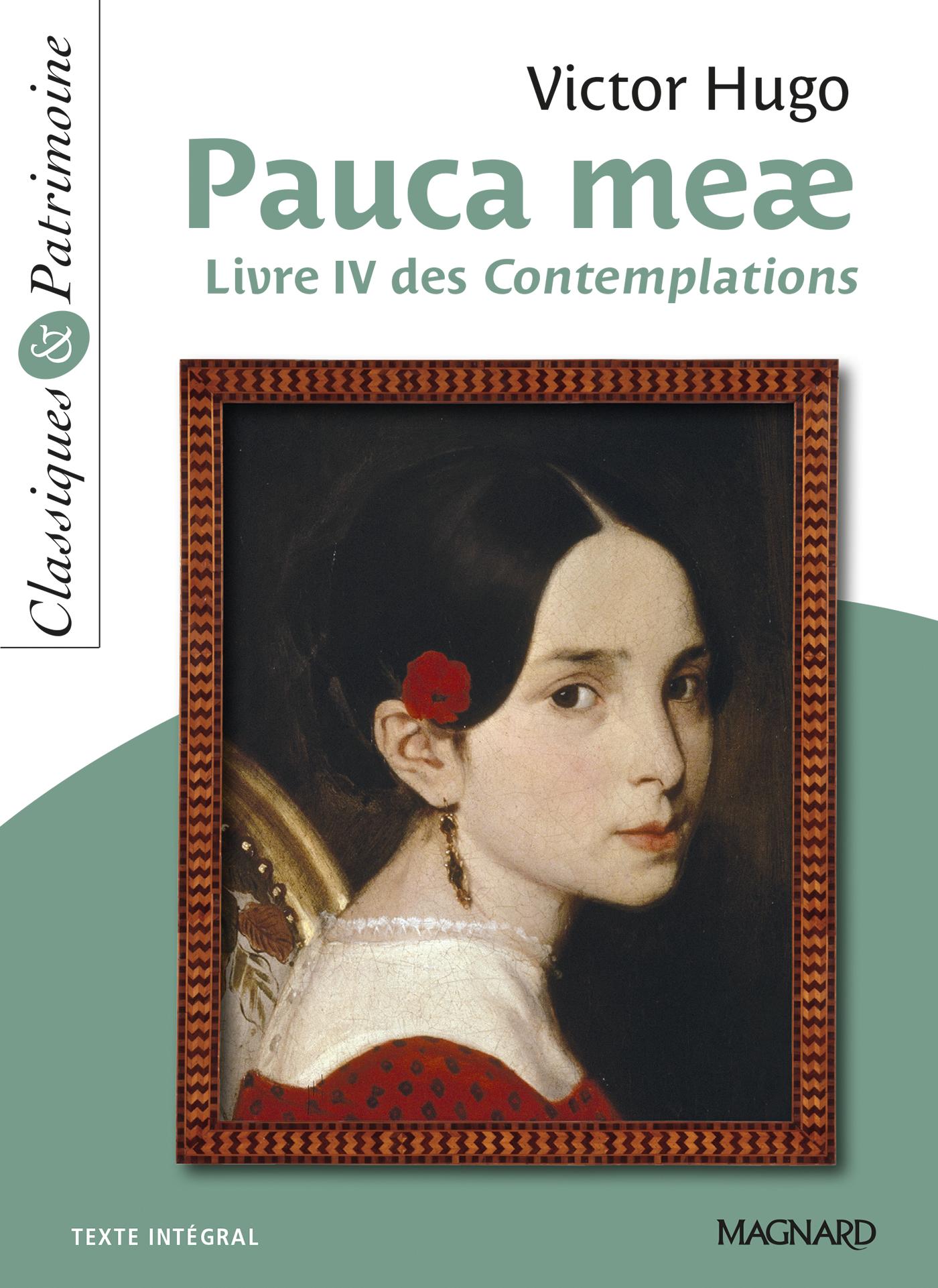 poeme v pauca meae