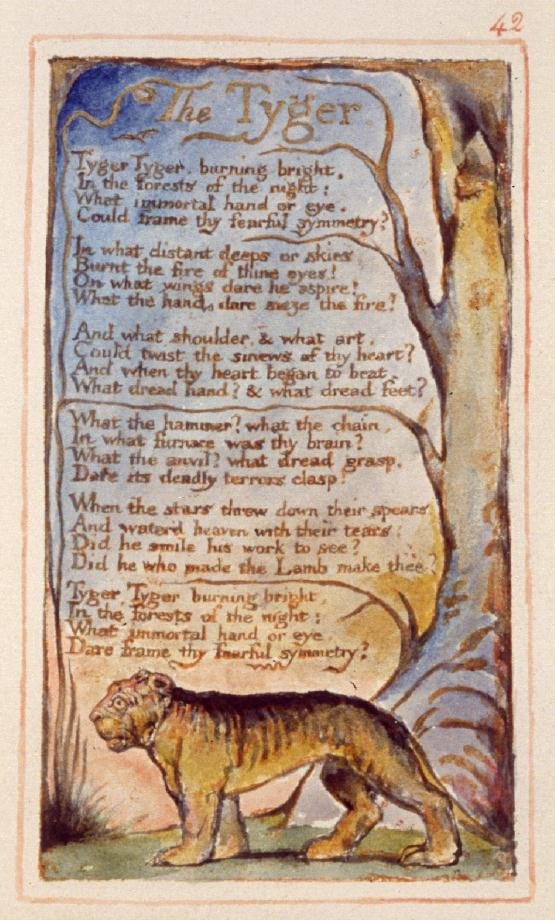 poeme william blake tigre