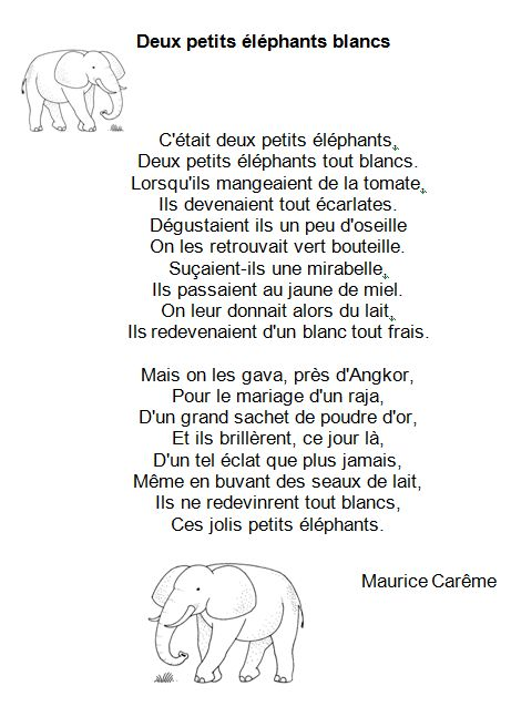 poesie 2 elephants blancs