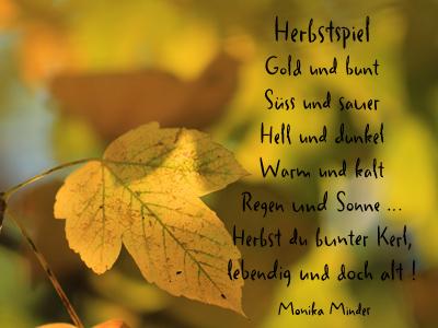 poesie 8 zeilen