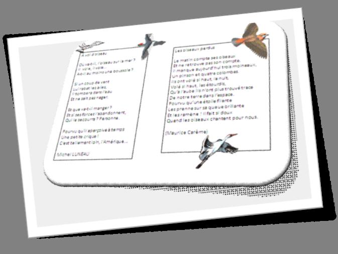 poesie a vol d'oiseau luneau