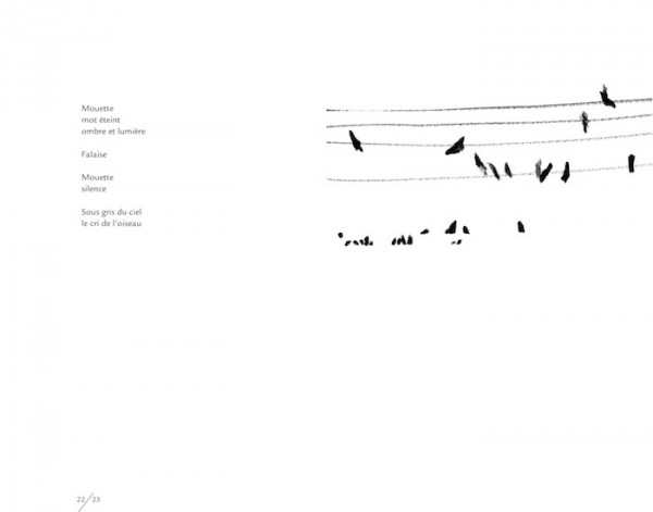 poesie a vol d'oiseau