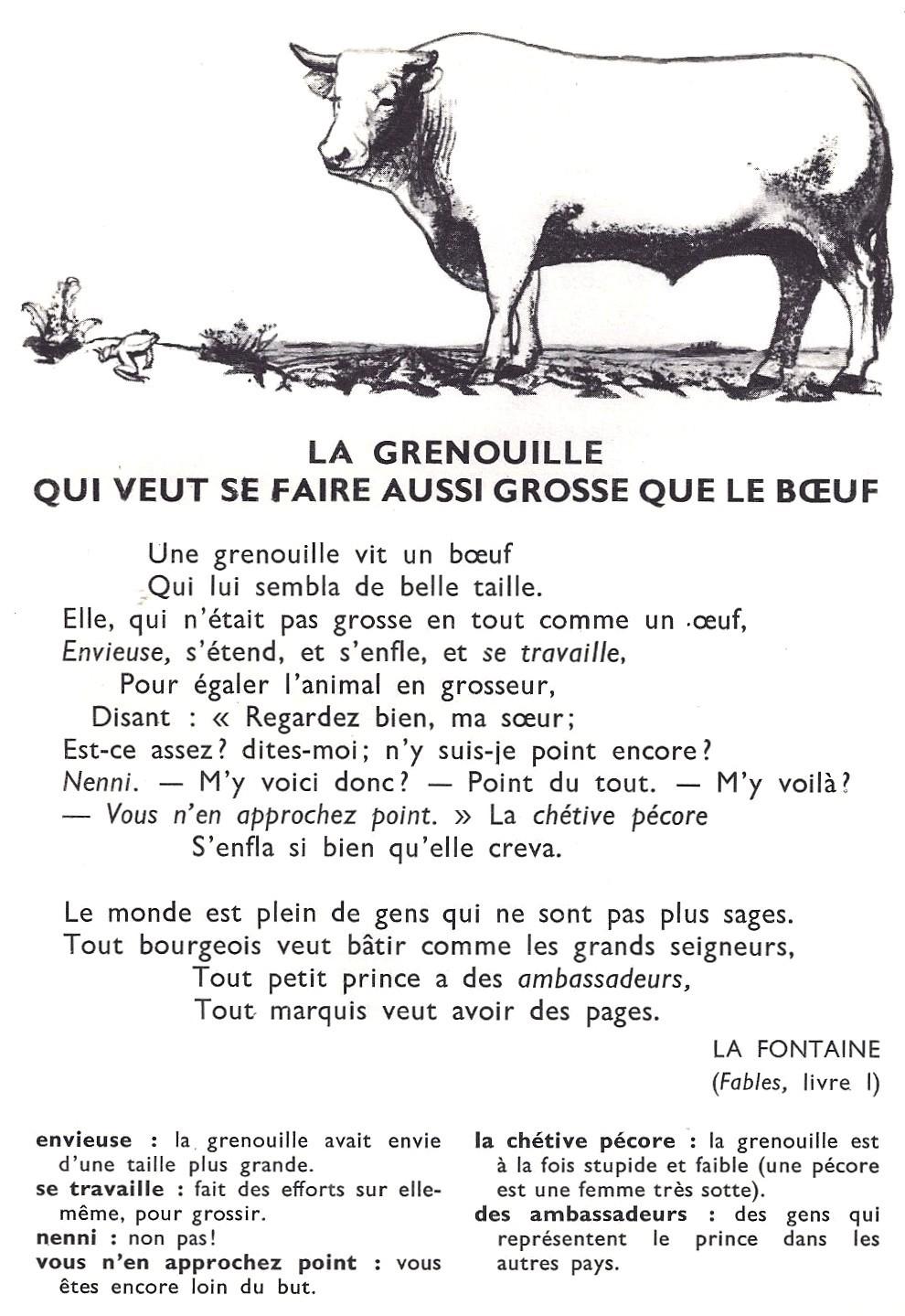 poesie grenouille boeuf