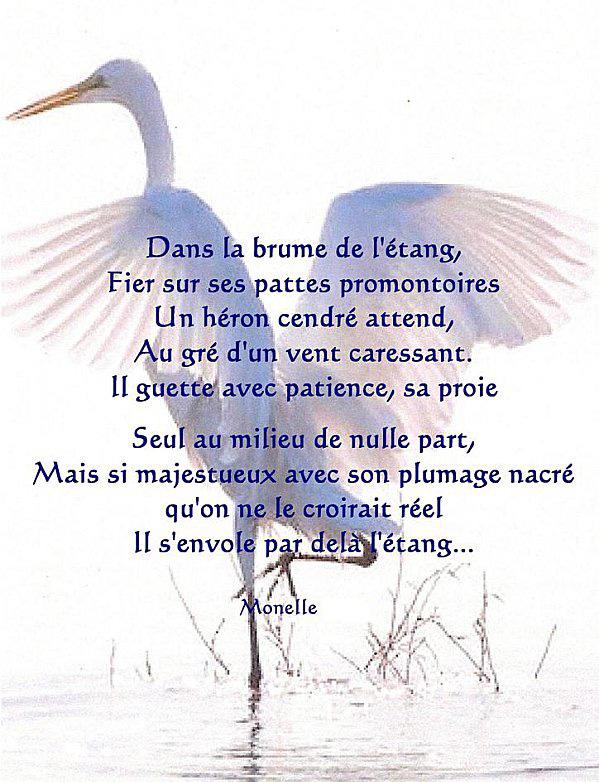 poesie heron