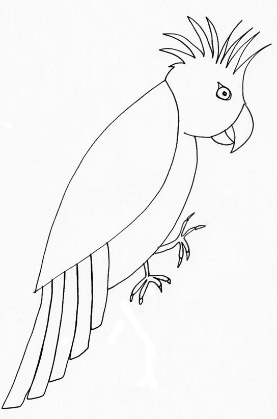 poesie kakatoes