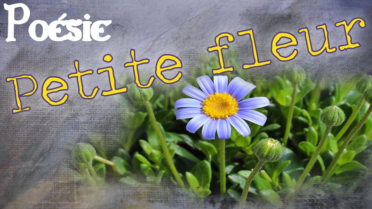 poesie karine persillet petite fleur