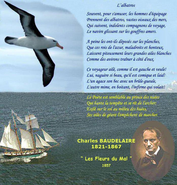 poesie l'albatros