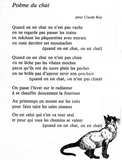 poesie le chat