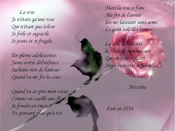 poesie rose