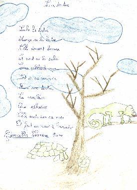 poesie tortue