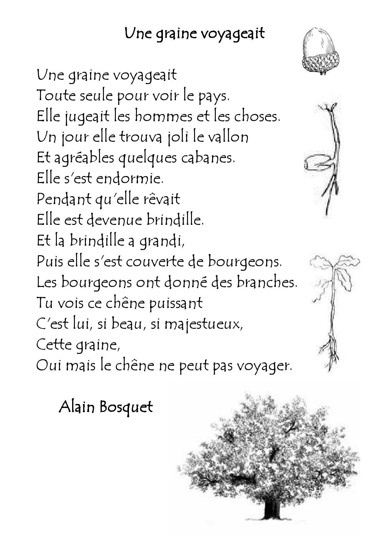 poesie une graine voyageait
