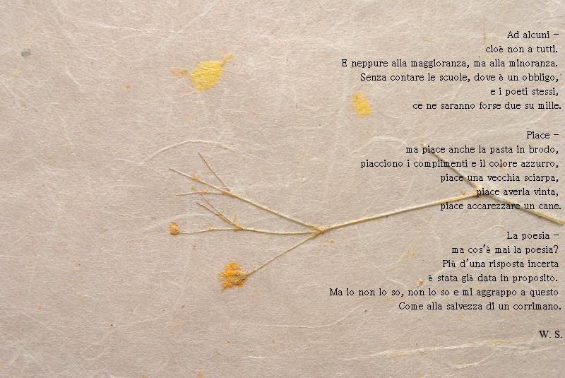 poesie wislawa szymborska