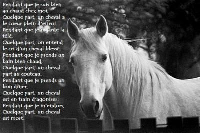 poeme cheval