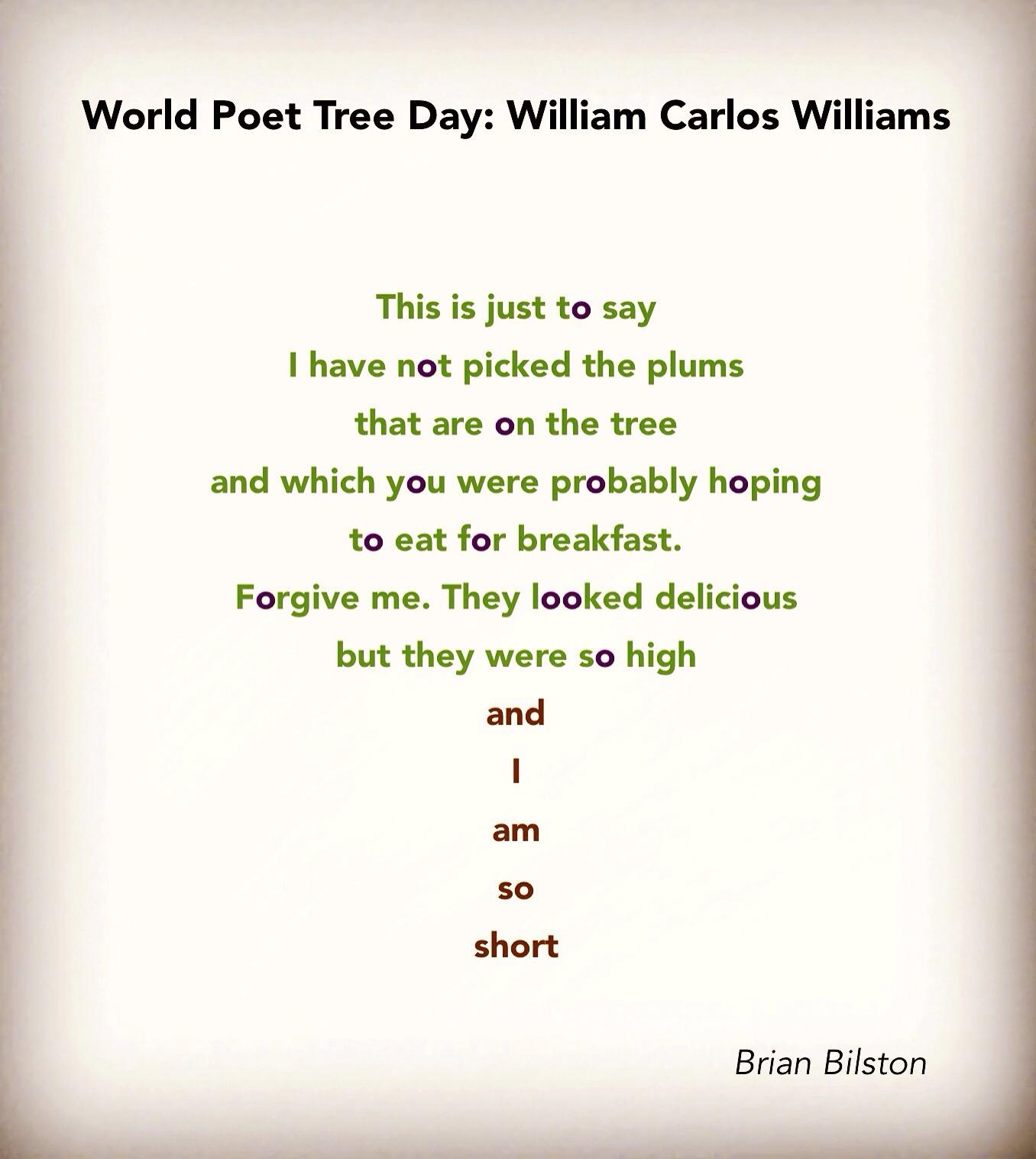 poeme william carlos williams