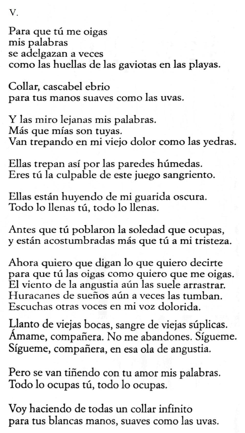 poesie d'amore neruda