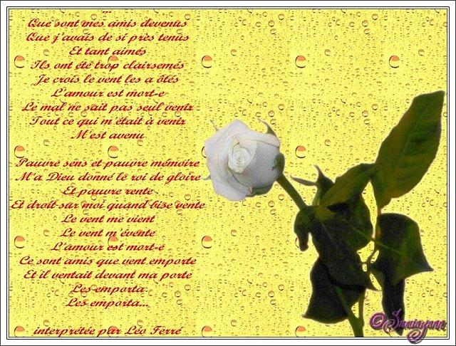 poesie que sont mes amis devenus